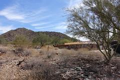 . (Kate Hedin) Tags: frank lloyd wright flw taliensin west desert tour cactus plant architecture apprentice cottage land mountains hills terrain
