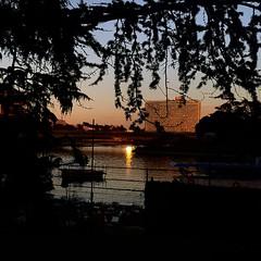 Tramonto al laghetto dell'EUR (falco di luna) Tags: roma aghettodelleur eur sunset tramonto