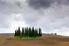 San Quirico d'Orcia (SLpixeLS) Tags: italy italie tuscany toscane toscana landscape paysage soil agriculture minimal minimalism tree arbre cypress cyprès sky ciel cloud nuage cloudy nuageux sanquiricodorcia