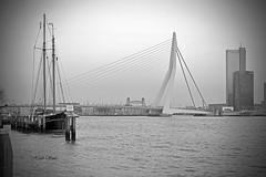 Erasmusbrug bw (Huib Smit) Tags: erasmus erasmusbrug rotterdam maas rivier zeilboot nederland holland monochrome