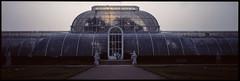 Kew Gardens, London, TW9 (tonywright617) Tags: sunset palmhouse kewgardens richmond london uk fujica g617 panoramic kodak e6 reversal iso400 120 mediumformat film analogue