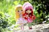 the nature walk☘️☘️☘️☘️☘️☘️☘️☘️ (sugarelf) Tags: cousinolivia strawberryshortcake doll pacificnorthwest naturewalk friendship theforevertalk frienddolls may