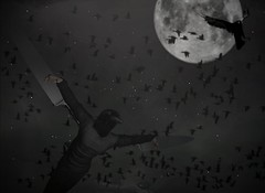What Dreams May Come (v NaTaS v) Tags: moon crow raven knife blade fly flying luna lunar flight deadwool