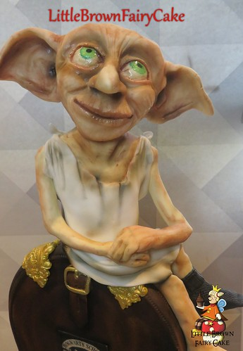 acloser dobby harry