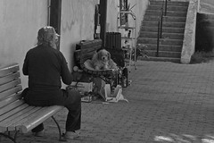 Man with his dog (alicejack2002) Tags: man malta sliema homeless dog
