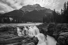 Top of Sunwapta Falls (jim peterson2012) Tags: sunwaptafalls sunwaptariver canadianrockies bwconversion icefieldparkway