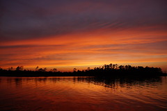 ...glow (Jim Atkins Sr) Tags: sunset spectacularsunsetsandsunrises cloudsstormssunsetssunrises dusk cloudscape clouds redclouds northcarolina northwestcreek fairfieldharbour sony sonyphotographing sonya58
