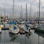 South Beach Harbor 4-2018 thumbnail