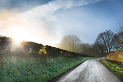 Misty Evening (jamesromanl17) Tags: landscape ruralscene countryroad fog field countryside tree copse scenery landscapes canon eos 5d markiii cheshire england britain uk road path sunlight sun sunset summer sundown mist misty light rural evening
