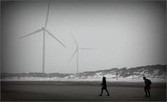 Dunes, plage et la mer du Nord, De Banjaard, Kamperland, Noord-Beveland, Zeelande, Nederland (claude lina) Tags: claudelina nederland hollande paysbas zeeland debanjaard plage dune merdunord noordzee éolienne zeelande