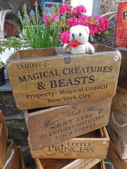 2018 Penzance 7-1Wed St Ives DT2 (g crawford) Tags: dangerted ted teddy teds dt stives cornwall cornish magicalbeasts