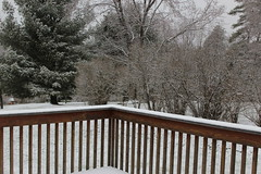 April 19 2018 Still Snowing (excellence III) Tags: april snow again new york 4192018