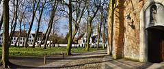Bruges béguinage (lecocqfranck) Tags: béguinage bruges elisabeth église
