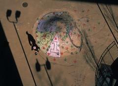 "Skateboard Park 10 • <a style=""font-size:0.8em;"" href=""http://www.flickr.com/photos/9012261@N03/40747249824/"" target=""_blank"">View on Flickr</a>"