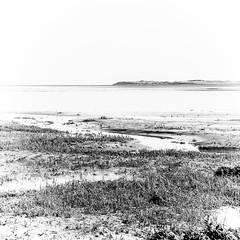 Outgoing Tide #2 (Novocastria Photography) Tags: select lindisfarne holyisland sea seaside coast rock rocks sand tide outgoingtide vintagephotograph newcastlechronicle northernecho