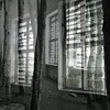 inside - outside (nika.vero) Tags: trees inside windows doubleexposure experiment