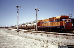 3398 NA1871 Caustic Soda Kwinana 10 January 1983 (RailWA) Tags: railwa philmelling westrail 1983 na1871 caustic soda kwinana