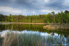 Fen at Mastbos Breda - Ven (schreudermja) Tags: ven fen mastbos breda nederland woods bos martyschreuder nikond800e hdr sunset water lake heide moorland