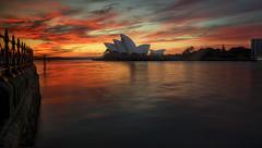 Morning Glory (Emerald Imaging Photography) Tags: operahouse sydney sydneyharbour sydneyoperahouse harboursydney harbour sunrise clouds cloud reflections nsw newsouthwales australia australian australianlandscape