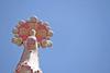 Le génie de Gaudi (Steph Blin) Tags: gaudi sagradafamilia barcelona édifice church cathédrale espagne ciel blue bleu cielo sky azul p