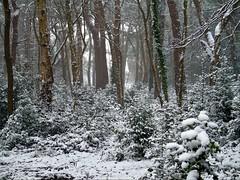 Bournemouth Snow 2018