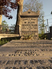 Soestbergen (klaroen) Tags: cemetery begraafplaats rijksmonument listed nationalmonument jdzocher utrecht park parc ecological ecologisch beheer