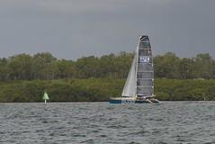 LOX_3702 (Lox Pix) Tags: australia queensland brisbanetogladstone yachtrace catamaran trimaran 2018 bossracing multihull loxpix moretonbay shorncliffe cabbagetreecreek rudder aground sailing