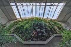 zieleń ściany (PanMajster) Tags: zieleń ściana green wall rośliny plants mask maska sky niebo blue sigma 816 pentax k3ii