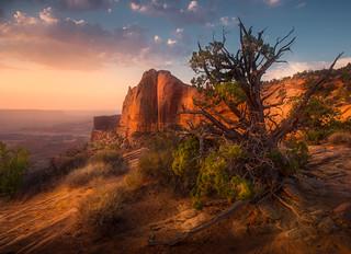 sunrise att Mesa Arch