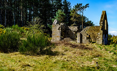 Roseisle Ruin (Tom McPherson) Tags: urbex urban burghead bothy disused a6000 sony moray forest woods roseisle house derelict ruin
