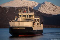 Harøy (sindre97) Tags: ferry ferge ferje fahre norge norway norvegen noreg fjord fjords fjord1 mrf fjord1mrf sea ocean winter spring bw black white yellow blue passenger transport