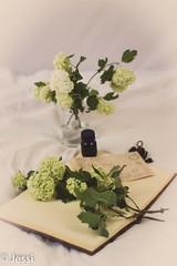 still life 2 (Felicis_Flower) Tags: flower stillleben stilllife book buch letter brief hortensie hydrangea