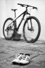 3.000.000 views! (Hélder Santana) Tags: bicicleta bike bycicle caloi adidas shoes shoe héldersantana heldersantana santana photography fotografia picture portfolio beleza beauty bealtiful brasil brazil hdsantana pretoebranco blackandwhite monocromatico monochrome natural light luz naturallight luznatural goldenhour contraste contrast bokeh dof raw lens prime nikon nikkor 50mm 12 f12 nikon50mmf12 nikon50mmf12ais nikkor50mmf12ais nikkor50mmf12 50mm12 50mmf12 ais manual manualfocus samsung samsungnx1000 nx1000 smartcamera samsungsmartcamera samsungsmart samsungcamera mirrorless mirrorlesscamera compactcamera cameracompacta compacta compact ciclismo ciclism strava cycling 3mi 3000000 passira pe pernambuco sunlight daylight