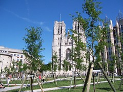 St. Michael Cathedral (Taaalia) Tags: brussels cathedral yoa