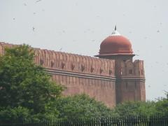 P1010896.JPG (AliaK) Tags: india delhi redfort