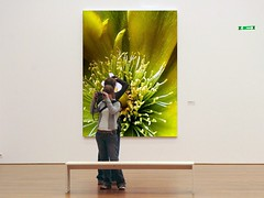 My Cactus Flower is in the Museum  ;) ( Graa Vargas ) Tags: cactus flower yellow museum interestingness379 i500 graavargas dumpr museumr 2006graavargasallrightsreserved 38112271009