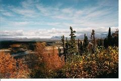 Copper River  and Wrangell-St Elias Mountains 2 (keistersmom) Tags: mountain fall alaska copperriver wrangellstelias