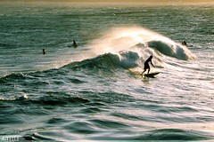 Surf #1 (rivello) Tags: brazil love praia beach rio brasil riodejaneiro surf passion ipanema calor surfe arpoardor