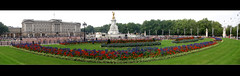 Buckingham Palace Flowers in Widescreen - by PDPB