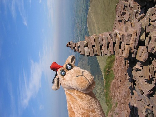 Who's at the top of Cribyn!