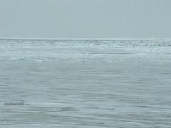 Frozen Lake Erie3-8-03 (FlaSunshine) Tags: lakeerie frozenlake frozentundra