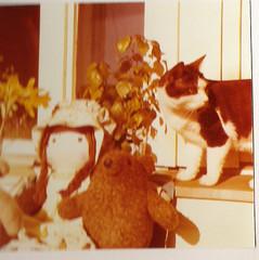 1970's, 1970-luku (Anna Amnell) Tags: toys dolls holly 1970s blackandwhitecat olddolls nuket 1970luku mustavalkoinenkissa vanhatnuket