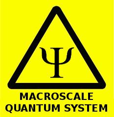 Macroscale quantum system