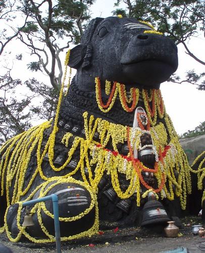 Nandi (bull) on the Mysore hill