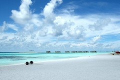 The Maldives: Free Wallpaper