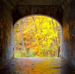 Autumn Framed. - by addicted Eyes
