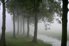 Dutch Landscape (siebe ) Tags: morning autumn mist holland topf25 netherlands dutch fog mystery landscape herfst nederland x explore topf mystical atmospheric mystic landschap aplusphoto hollandsiebe hollandstock