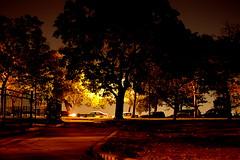 (pmarella) Tags: park new city trees sky urban usa color night landscape lights newjersey jerseycity minolta nj whatever viewlarge donttrythisathome hudsoncounty throughmyglasseye citybelt wanderingatnight