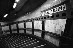 From London | To the Trains  - Leica M2 (MR Photog) Tags: leicam2 superangulon 21mm leitz schneider kreuznach rangefinder bw blackandwhite agfa100 pushed subway train station tube mindthegap stairs stairwell sign passenger masstransit city urban london uk