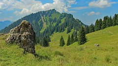 Allgäu (yorkiemimi (away for a while)) Tags: germany deutschland bavaria bayern allgäu nature mountins sky green landscape scenery landschaft natur berge